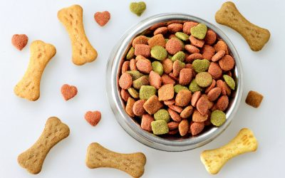 best dog food with fiber
